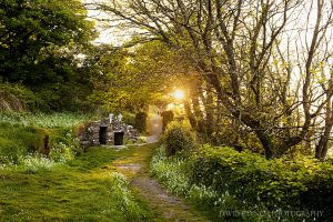 St Declan's Well, Ardmore Waterford